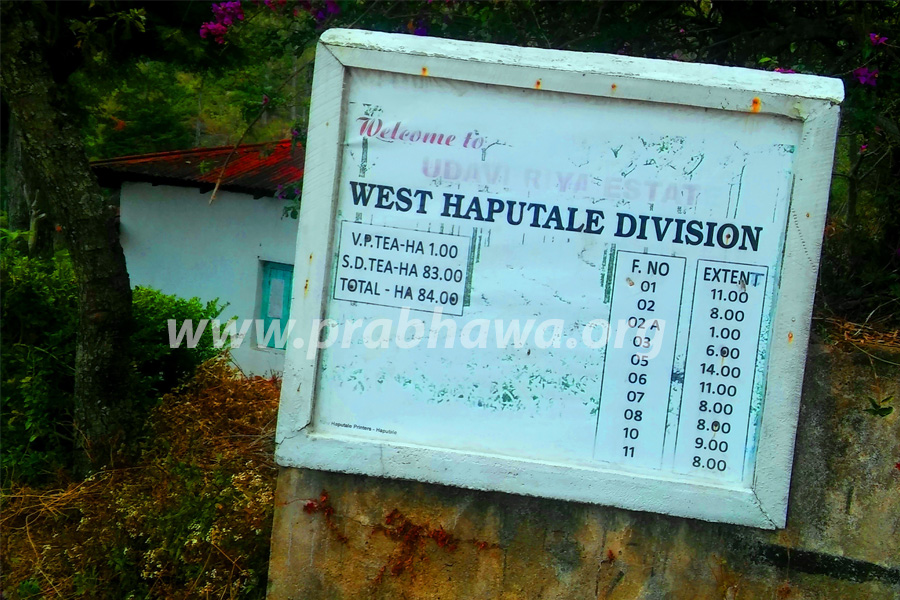 Inspection Visit - West Haputale School